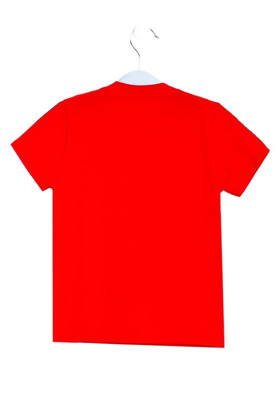 Czerwona Koszulka Decipherment