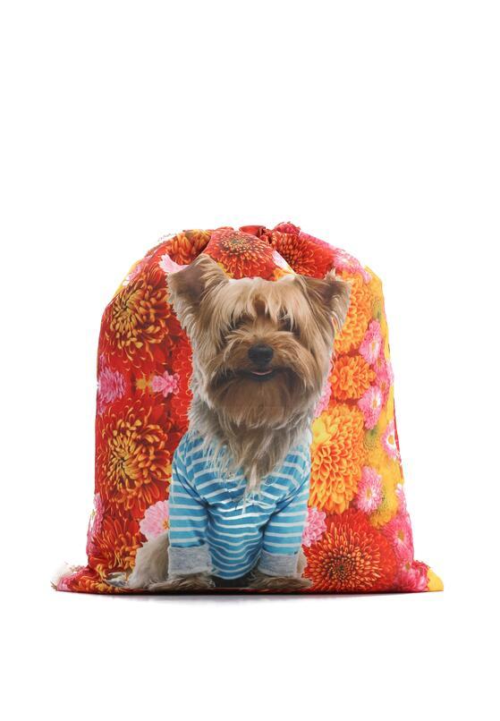 Pomarańczowy Plecak Personal
