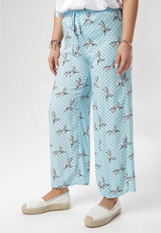 Jasnoniebieskie Spodnie Adrialea