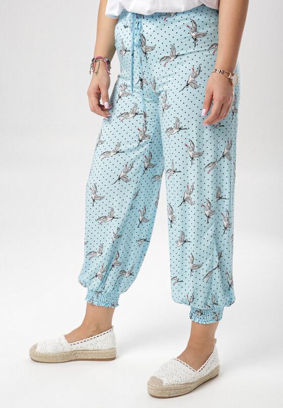 Jasnoniebieskie Spodnie Cherishi
