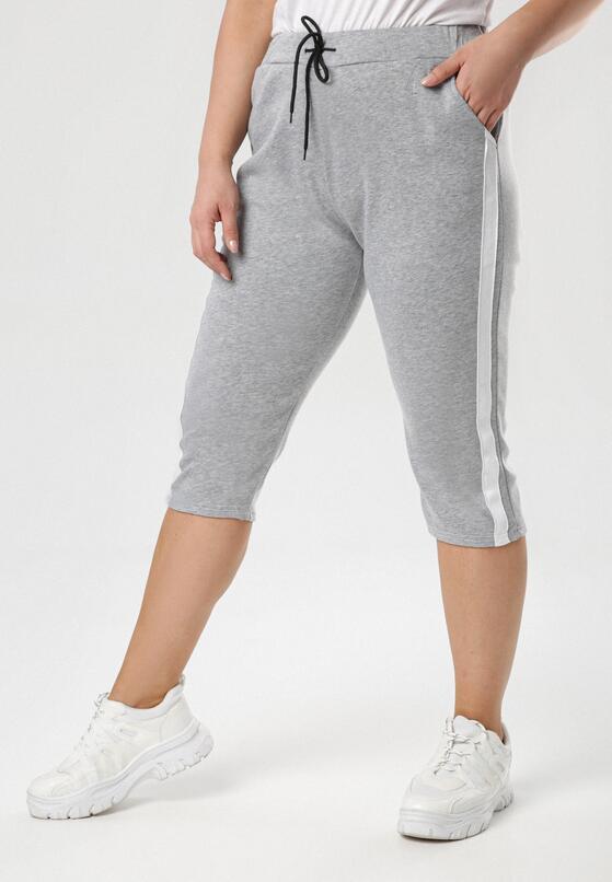 Szare Spodnie Aterodia