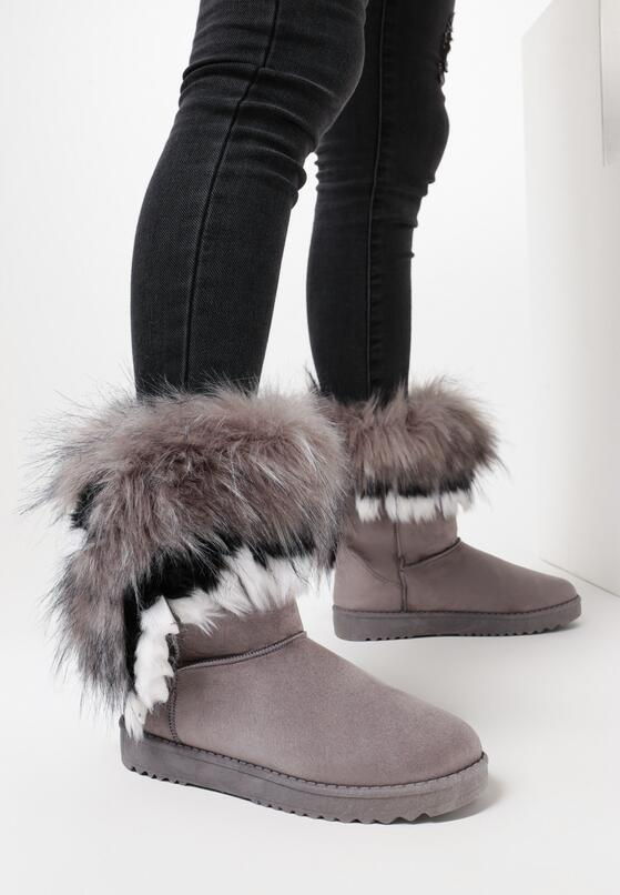 Szare Śniegowce Foxrock