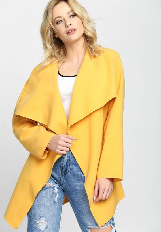 Żółty Płaszcz Whiptail