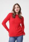 Czerwony Sweter Evolutive