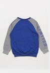 Niebieska Bluza Goff