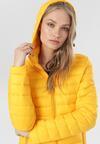 Żółta Kurtka Lynnsea