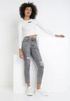 Szare Jeansy Mom Fit Myrithaia