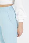 Niebieskie Spodnie Dresowe Thelxiesise