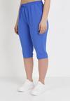 Ciemnoniebieskie Spodnie Viffi