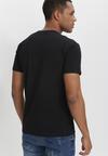 Czarna Koszulka Acalephaia