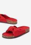 Czerwone Klapki Subcellular